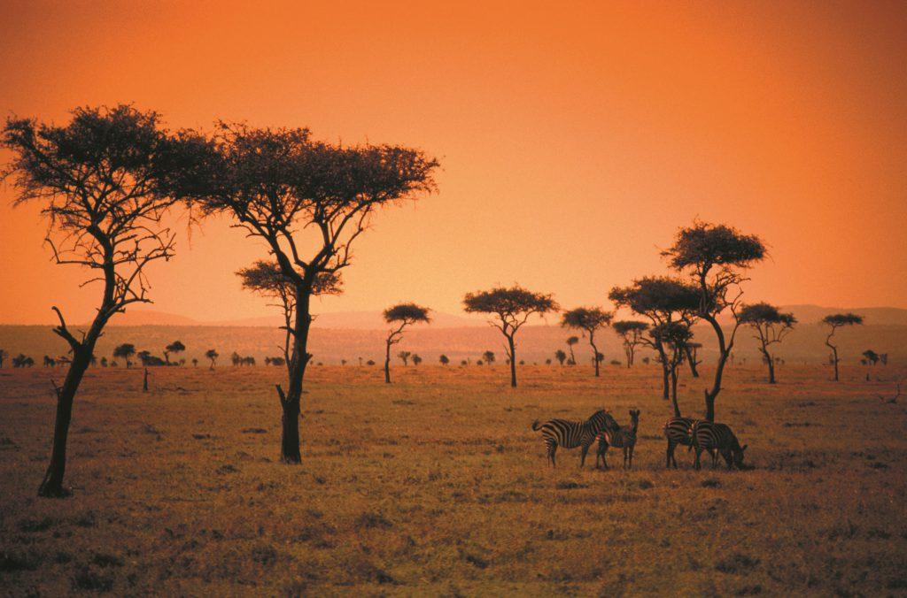 Aafrika Keenia safari