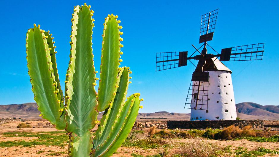 Fuerteventura, Kanaari saared