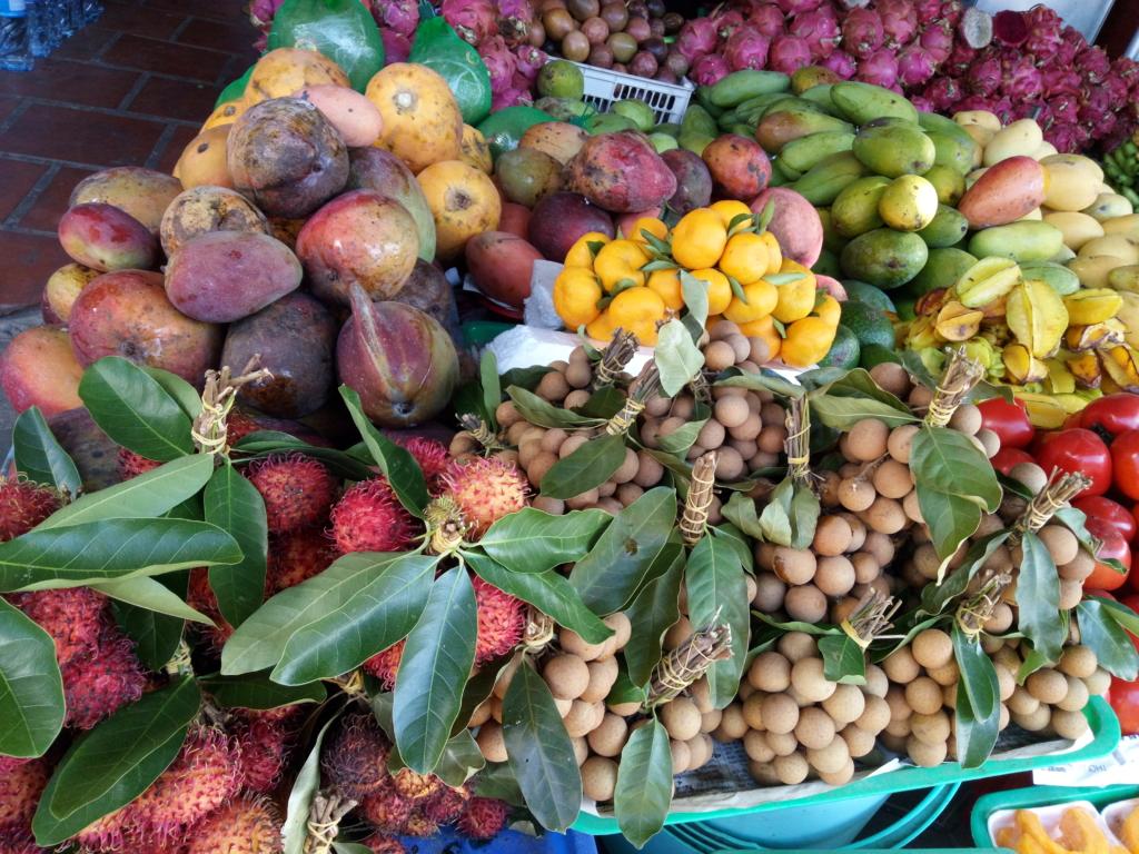 Vietnam – eksootiline Kagu-Aasia aare